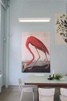 Poppytalk: Ode to the Flamingo