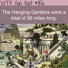 WATCH THIS AWESOME VIDEO ABOUT THE HANGING GARDENS the most expensive gift in history. The Hanging Gardens of Babylon were one of the Seven Wonders of the Ancient World, and the only one of the wonders that may have been purely legendary. MORE OF WTF-FUN-FACTS are coming HERE funny and weird facts ONLY