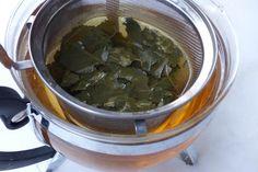 Der sanft entwässernde und dabei nierenschonende Birkenblättertee kann das ganze Jahr über getrunken werden. Er entsäuert den Körper und schmeckt angenehm.