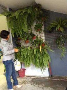Estudiantes de Guerrero promueven #reciclaje y trueque ecológico vía @notimex - Contenido seleccionado con la ayuda de http://r4s.to/r4s