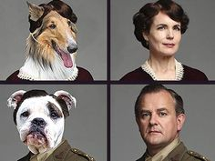 Downton Abbey Characters Get Reimagined as Dogs (via @Dogster & Catster)