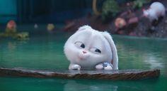 Rabbit Wallpaper, Cute Panda Wallpaper, Cute Disney Wallpaper, Funny Cartoon Gifs, Cartoon Pics, Cute Cartoon Wallpapers, Snowball Rabbit, Baby Animals, Cute Animals