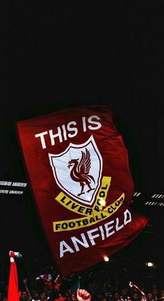 Sports – Mira A Eisenhower Liverpool Logo, Liverpool Anfield, Liverpool Champions League, Salah Liverpool, Liverpool Soccer, Liverpool Players, Liverpool Football Club, Liverpool Tattoo, Stadium Wallpaper