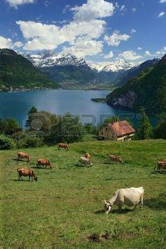 Weggis Switzerland