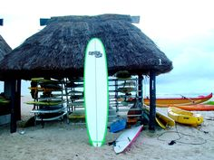 Newport Surfboard, Namoto Fiji