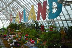Playland at the Conservatory of Flowers
