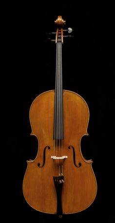 A nice photo: The Cailin Wulter Montagnana 7 (this is the also the model of my cello.)