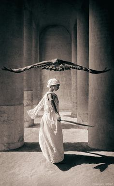 Eagle with Dancer, Santa Monica Art Print by Colbert, Gregory 24 x Rapace Diurne, 4 Image, Image Search, Image Link, Willy Ronis, Tim Walker, Reproduction, Santa Monica, Belle Photo