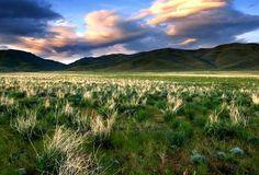 Camas Prairie Idaho. Boise photographer nabs top prize in 2012 Idaho Outdoors / Idaho Camera Photo   Congratulations Rob Hart, My Crayon Box thanks you too!!