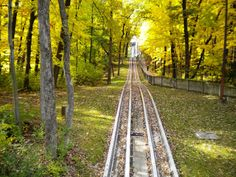 The tobaggon run at Pokagon State Park, Angola, Indiana in the Fall. Angola Indiana, Happy Fall Y'all, The Ranch, Small Towns, Auburn, Garden Art, Great Places, State Parks, Birth