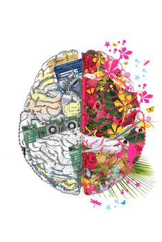 The brain is divided into two identical sides. While they do co-operate together, the left brain is involved with more rational aspects such as logical thinking, and the right side of the brain is more emotionally and visually orientated.