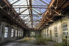 usine désaffectée, la nature reprend ses droits!!!!!! © BELIG PHOTOGRAPHIE