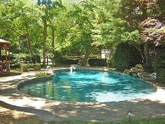 Natural Looking Backyard With Pool Under The Tree's