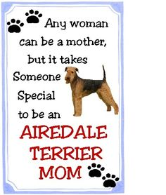 Airedale Mom!AAAAAAAAAAAAAAAAHHHHHHHHHHHHHHHHHHHHHHHHHHHHHHHHHHHHHHHHHHHHHHHHHHHHHHHHHHHHHHHHHHHHHHHHHHH