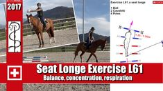 ch Online Training - Work-out Concentration muscle training - horsephysio. Horse Exercises, Training Exercises, Lunging Horse, Horse Riding Tips, Riding Lessons, Muscle Training, Horse Training, Show Jumping, Dressage