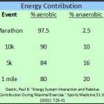 half marathon specific training