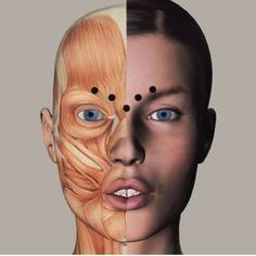 Το πρόσωπο μας αποτελείται από μύες, γυμνάστε τους σε εμάς και δείξτε νεότεροι και λαμπερότεροι από την πρώτη κιόλας εφαρμογή! #pureliftface #facelifting #facegym #studiomiha #ems #geniusbymihabodyteclarissa #larisa Face Gym, Body Tech, Ems, Halloween Face Makeup, Training, Pure Products, Hair, Work Outs, Excercise
