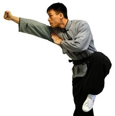 Reflecting on Traditional Chinese Martial Arts: Past, Present, and Future