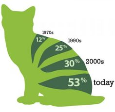 percentage of overweight or obese cats in recent decades.