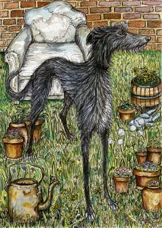 Lurcher art dog print by Elle J Wilson by AlmostAnAngel66 on Etsy. £15.00 GBP, via Etsy.