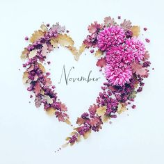 November 2 2018 ・ ・ ・ Happy new month everyone🍁 ・ November heart for you😙 ・ Love this beautiful aster🌸 ・ ・ ・ 改めて今月もよろしくお願いします🤲 ・……Идеи контента времена года/ осень Hallo November, Welcome November, November Month, Seasons Months, Months In A Year, 40 Years, Calendar Wallpaper, Fall Wallpaper, November Images