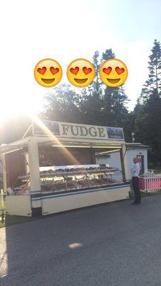 #Fudge <3 @HarrogateFlower