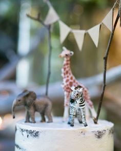 Baby Animals Semi naked chocolate cake with handmade bunting