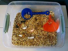 Sensory play with farm animals and tractors. We did this as a scavenger hunt game for a barnyard themed birthday party using feed corn, but you could also use popcorn kernels, rice, bird seed or assorted dried beans.