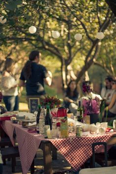 DIY Pic nic party! : )