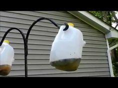How to make a Homemade Fly Trap that WORKS! This is actually made with NO COST from you because the items used are used by your family or friends. When it is...