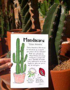 Bianca Nazari on Behance House Plants Decor, Plant Decor, Balcony Garden, Indoor Garden, Botanical Gardens, Botanical Prints, Inside Garden, Watercolor Succulents, Plant Guide