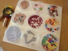 Magnifier Discovery Board. Could also do other themes, leaves, shells etc