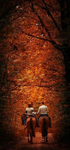 Horseback riding with the love of your life during a gorgeous Autumn day? Sounds absolutely perfect. <3