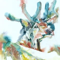 Liz Chaderton   WATERCOLOR