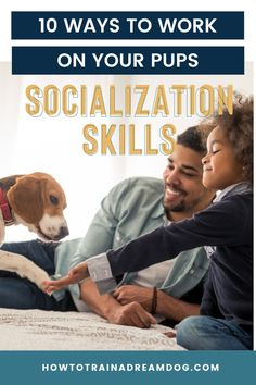 Socialization is not just about letting your pup play with other pups, although that is a great start! Here are 10 ways to work on your pups socialization skills. Puppy Obedience Training, Puppy Training Tips, Parkour, New People, Puppy Socialization, Reactive Dog, Cute Dog Photos, Best Puppies, Puppy Play