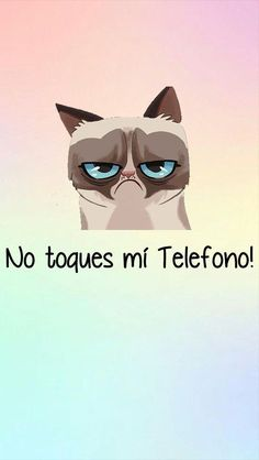 wallpaper - Malo Gatito I love the grumpy cat No Touch My Phone, Touch Me, Screen Wallpaper, Cool Wallpaper, Wallpaper Backgrounds, Cellphone Wallpaper, Iphone Wallpaper, Animal Wallpaper, Favim