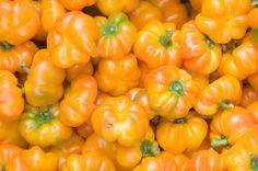 more orange food #organge #sadolin #spalvupasaulis