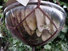 How To Make A DIY Bubble Beehive | 10 Bee-utiful Beehive DIY Projects | Helpful Hints For Hives At Home | diyready.com