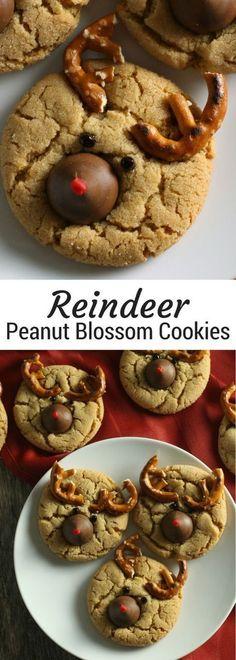 Reindeer Peanut Blossoms | Christmas peanut blossom cookies | Peanut Butter Kiss Cookies for Christmas | Christmas cookie trays and cookie swaps or exchanges #christmascookies #christmasrecipes #peanutbutter
