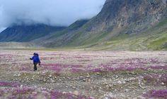 Nunavut, Canada. Want to go so badly.