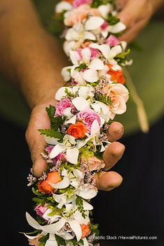 The Haku Lei is saved for the most special of occasions. This lei is not only beautifully hand crafted, but no Haku Lei will ever be identical. Each its own piece of art, worn only on the specialist o Hawaiian Flowers, Tropical Flowers, Hawaiian Leis, Hawaiian Crafts, Hawaiian Dancers, Exotic Flowers, Purple Flowers, Tahiti, Flower Lei