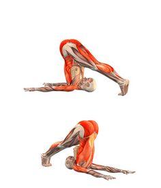 #HALASANA Plow pose | YOGA.com