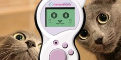Meowlingual Cat Translation para entender a los gatos http://j.mp/1S5aZmt | #Gadgets, #Mascotas, #MeowlingualCatTranslation, #Noticias, #TakaraTomy, #Tecnología