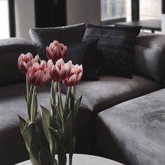 86 個讚,2 則留言 - Instagram 上的 BoConcept Stuttgart(@boconcept_stuttgart):「 Ab aufs Sofa und den Abend ausklingen lassen :) #boconcept #urban #design #stuttgart #instahome… 」 Sofa, Couch, Boconcept, Contemporary Furniture, The Hamptons, Love Seat, Urban Design, Den, Home Decor