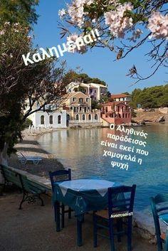 Mykonos, Santorini, Places Around The World, The Places Youll Go, Places To See, Around The Worlds, Beautiful World, Beautiful Places, Beautiful Beautiful