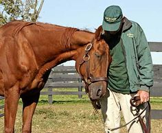 Precisionist & Michael Blowen at Old Friends (selections from More Old Friends by Barbara Livingston)