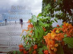 "Be kind to one another tenderhearted forgiving one another even as God in Christ forgave you.""Ephesians 4:32 love #instagood #tbt #beautiful #photooftheday #justgoshot #peoplecreatives #quotesoftheday #quotes #alkitab #bible #biblequotes #bibleverse #l4l #instacool #positive #positivevibes  #positivethinking #jesus #motivasi #motivationalquotes #motivation #inspiration #inspiring #inspirasi #inspirationalquotes  #bestoftheday  #pinterest #IFTTT #IFTTT"