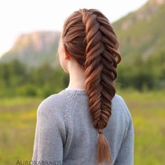 Inventive Braids Hairstyles for Women (16)
