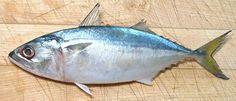 அயிலை மீன் குழம்பு (Indian Mackerel Fish curry in Tamil)