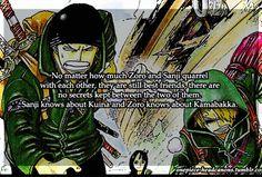 One Piece Headcanons: Zoro and Sanji